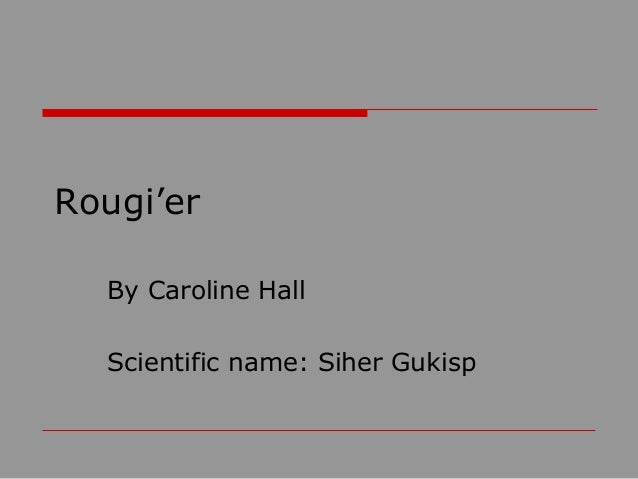 Rougi'er By Caroline Hall Scientific name: Siher Gukisp