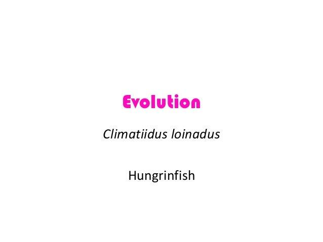 Evolution Climatiidus loinadus Hungrinfish