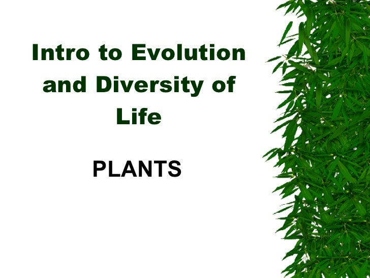 Intro to Evolution and Diversity of Life PLANTS