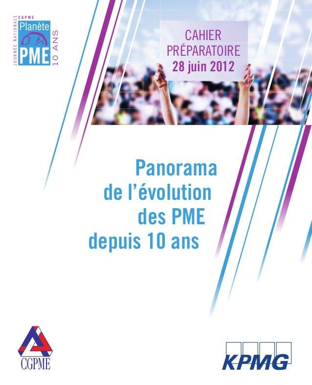 Evolution des pme depuis 10ans 2012