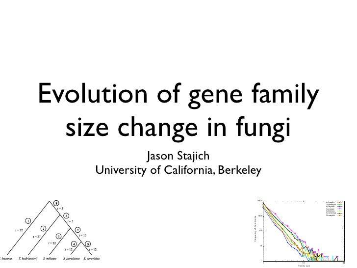 Evolution of gene family                       size change in fungi                                                       ...