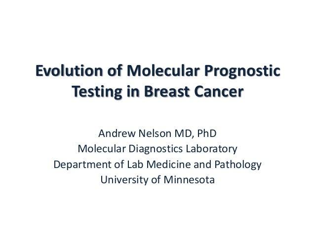 Evolution of molecular prognostic testing in ER positive breast cancer