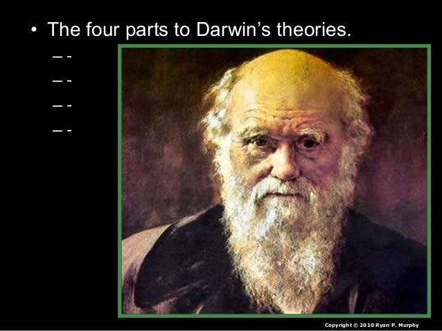 • The four parts to Darwin's theories. – - – - – - – - Copyright © 2010 Ryan P. Murphy