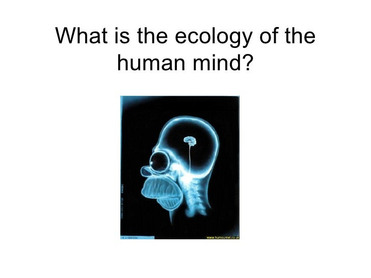 What is the ecology of the human mind?