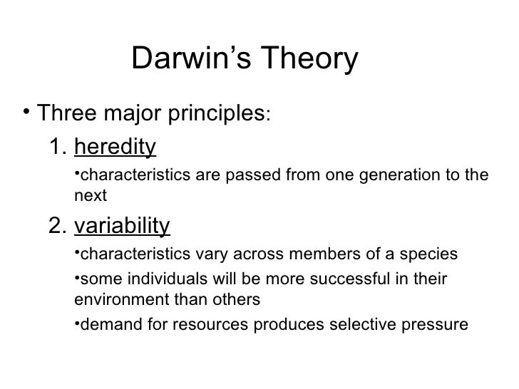 theory of evolutionary psychology The branch of psychology in which aspects of brain structure, cognition, and behavior are interpreted as evolutionary adaptations to the physical or social environment.