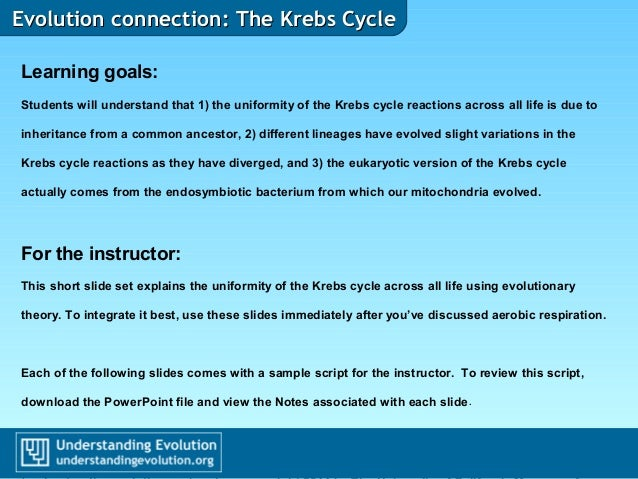 Evolution connection: The Krebs CycleEvolution connection: The Krebs Cycle Learning goals: Students will understand that 1...