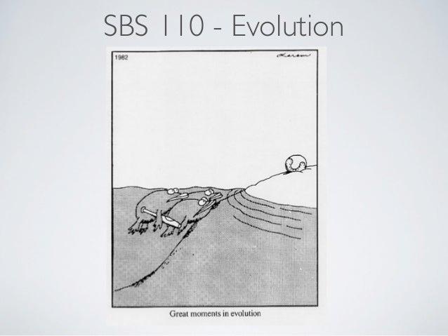 SBS 110 - Evolution