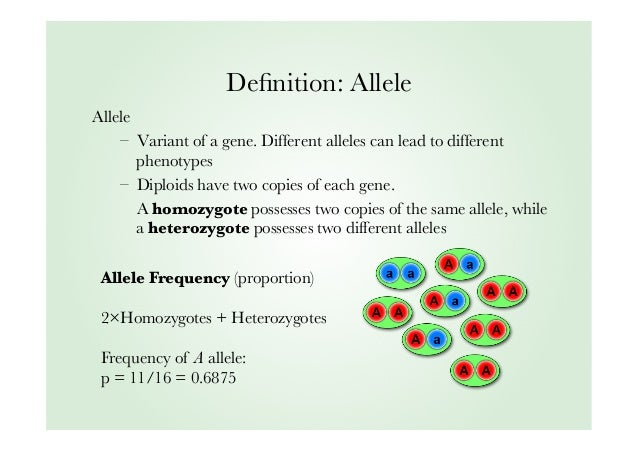 science definition of relative dating