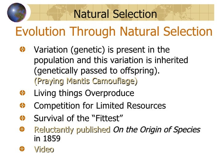 "evolution and natural selection essay Explain why darwin named his theory ""natural selection words describe why we should not confuse evolution (natural selection) complete your papers in 6."