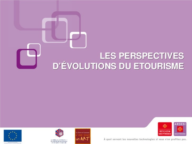Les perspectives d'évolutions du etourisme (2010)