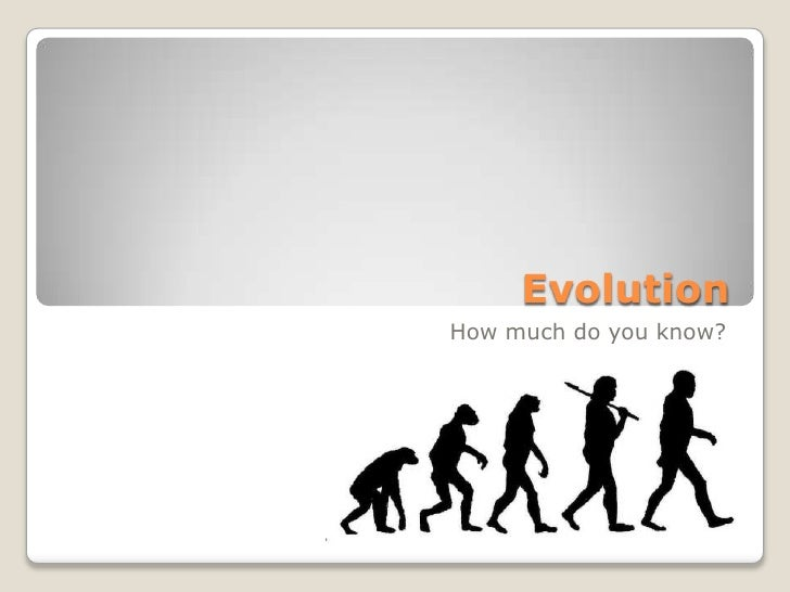 Evolution - What do you believe in?