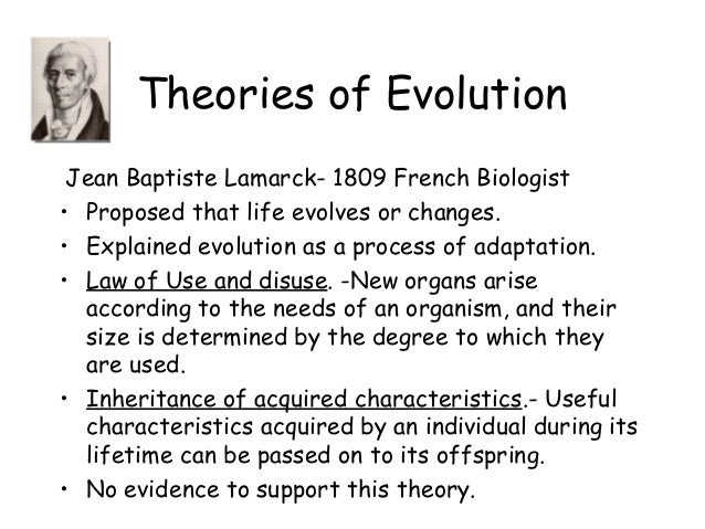 a comparison of the soup and sandwich theories of evolution This chapter focuses on the profile method of flavor analysis and  evolution of a flavor  one test calls for confining a sandwich made with a.