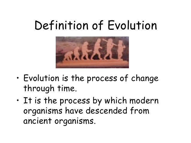 a comparison of the creationism and evolution theories of human origin Creationism, evolution and  there are two predominant theories on the origin of  this powerful moment was likely the catalyst for 'human' evolution.