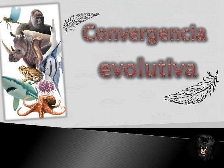 Convergencia<br />evolutiva<br />