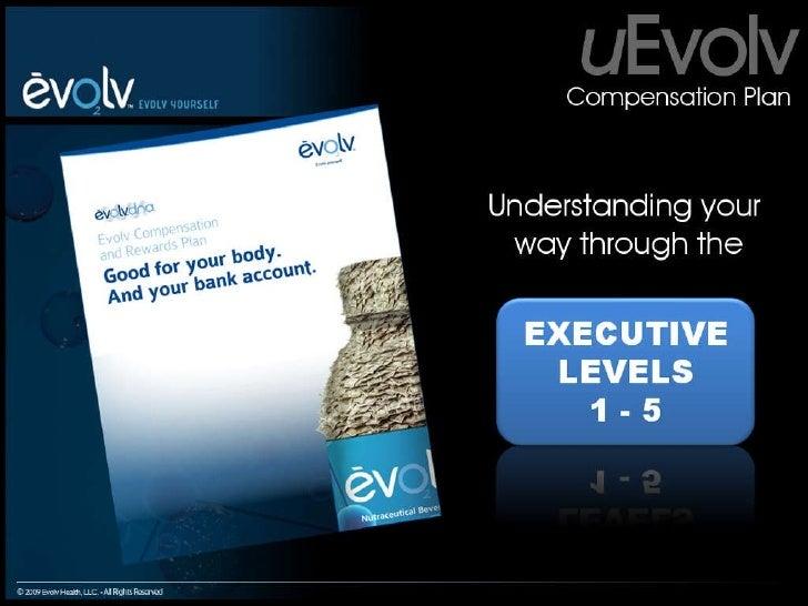 Evolv Comp Plan Executive