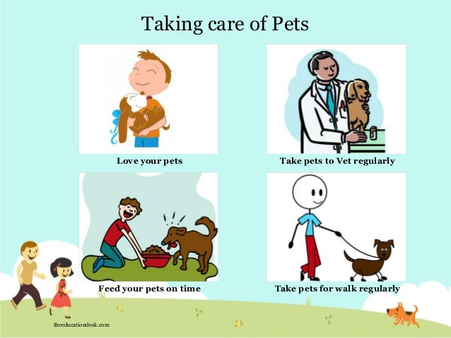 How to take care of pets worksheets,emergency go bag contents,survival ...