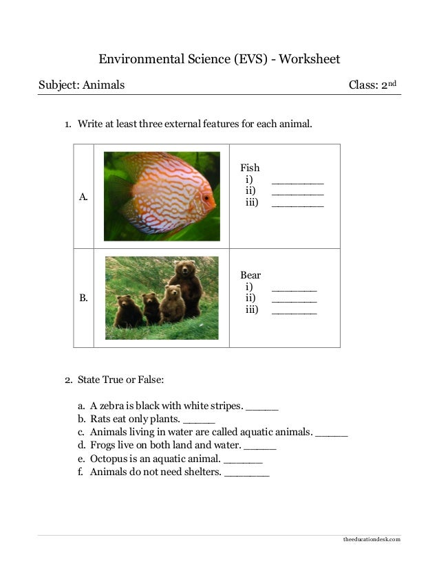 Environmental Science (EVS) : Animals Worksheet (Class II)