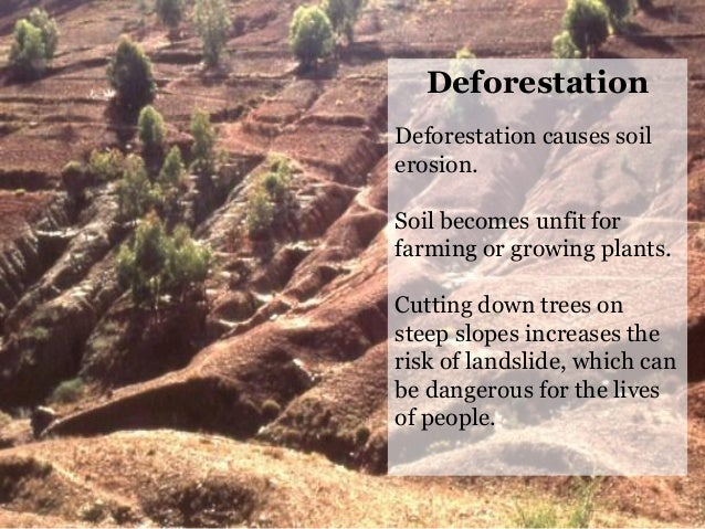 Evs class 2 our environment for Soil erosion causes