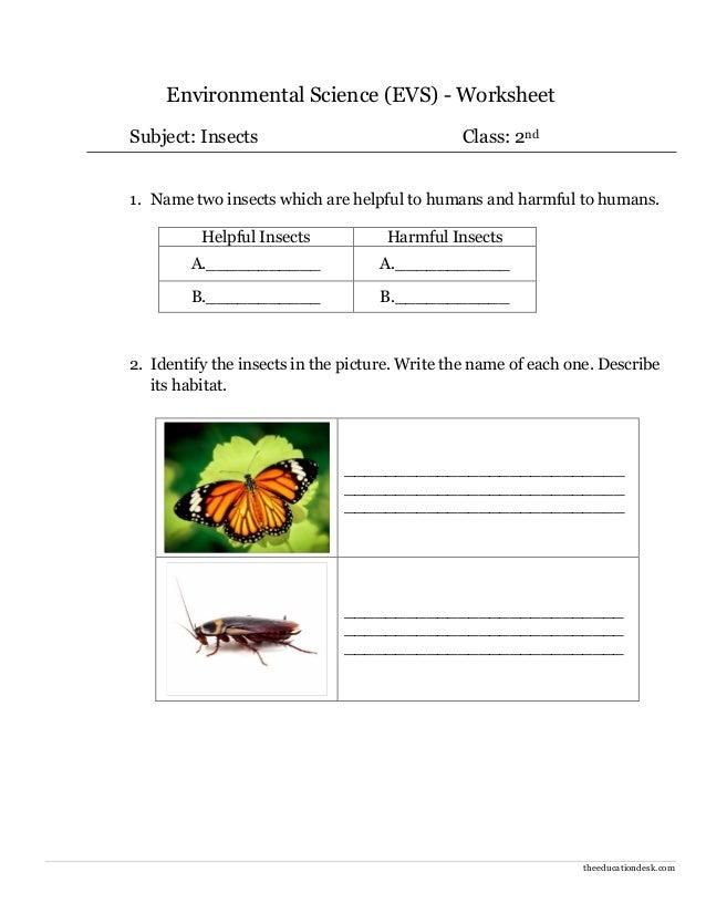 Environmental science worksheets