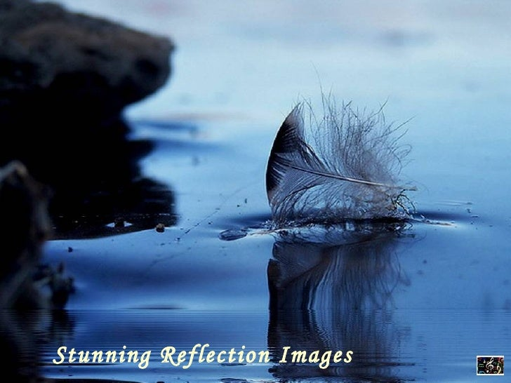 Stunning Reflection Images