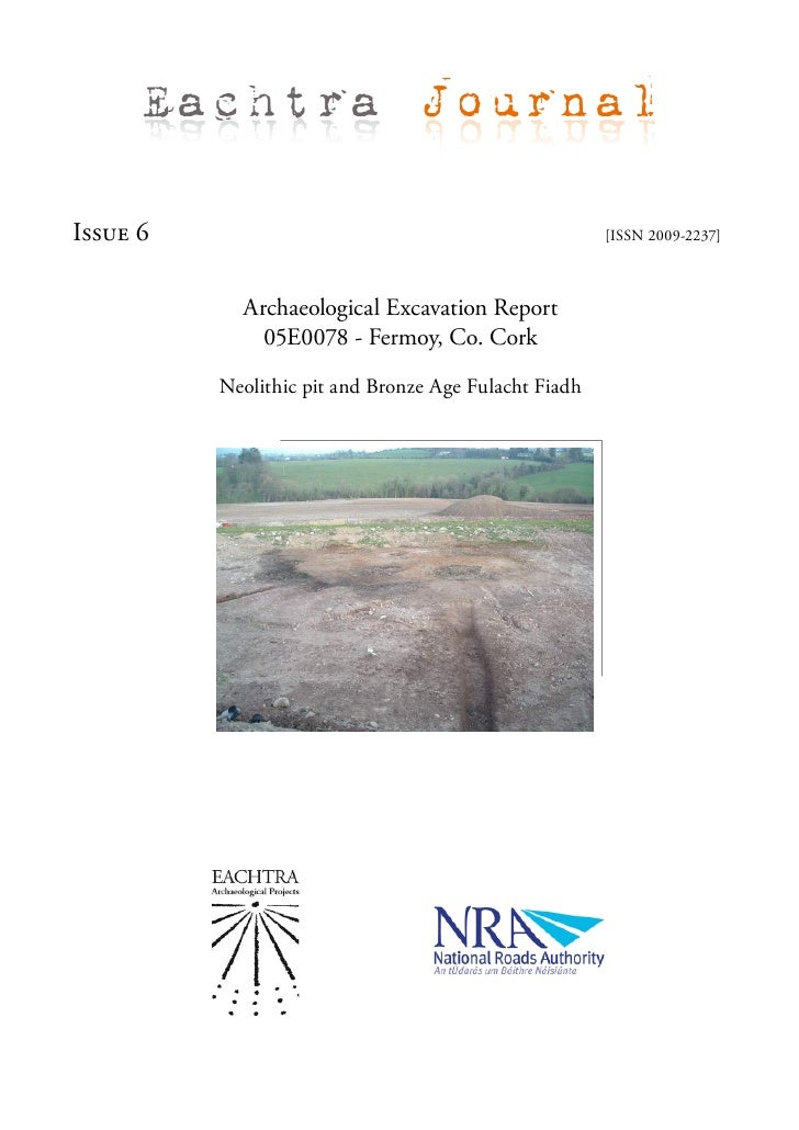 Archaeological Excavation Report  05 E0078 Fermoy twd, N8RF