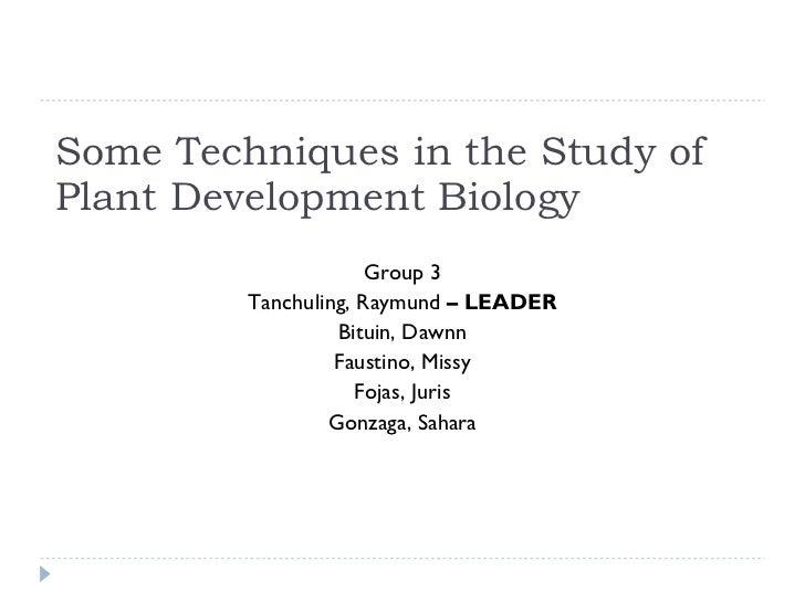 Some Techniques in the Study of Plant Development Biology Group 3 Tanchuling, Raymund  – LEADER Bituin, Dawnn Faustino, Mi...