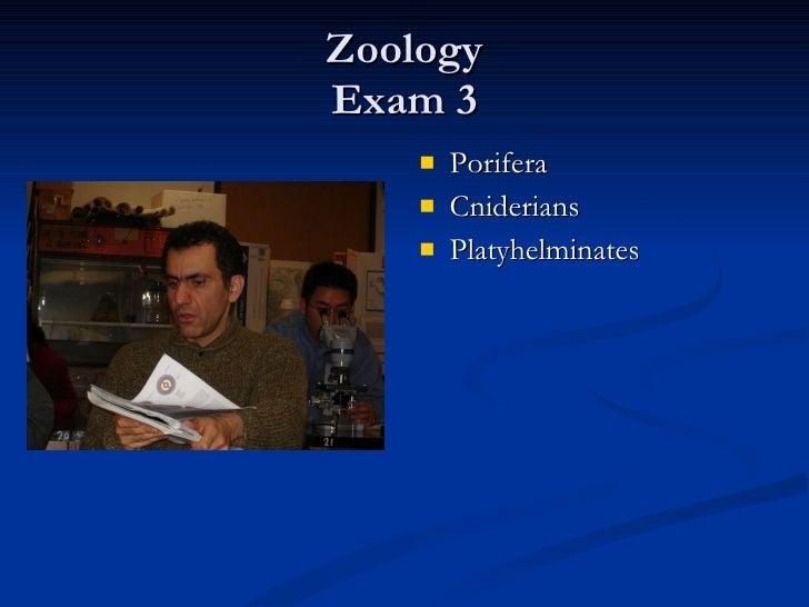 Zoology Exam 3 <ul><li>Porifera </li></ul><ul><li>Cniderians </li></ul><ul><li>Platyhelminates </li></ul>