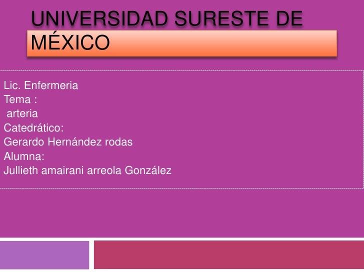 UNIVERSIDAD SURESTE DE     MÉXICOLic. EnfermeriaTema : arteriaCatedrático:Gerardo Hernández rodasAlumna:Jullieth amairani ...