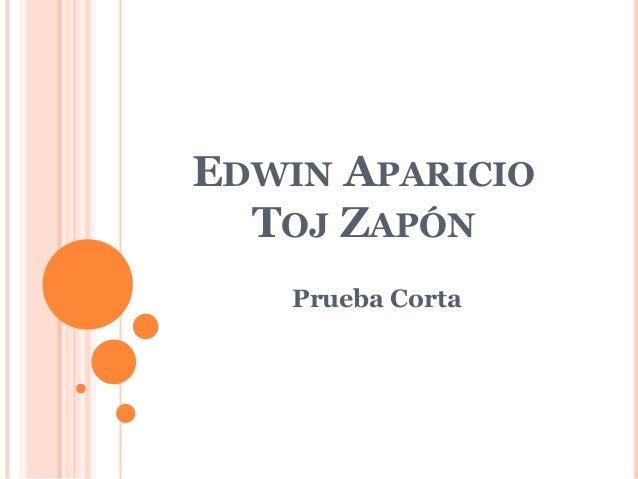 EDWIN APARICIO  TOJ ZAPÓN    Prueba Corta