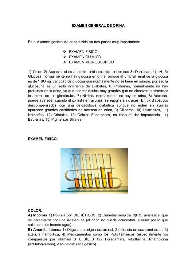 EXAMEN GENERAL DE ORINA En el examen general de orina divide en tres partes muy importantes:  EXAMEN FISICO  EXAMEN QUIM...