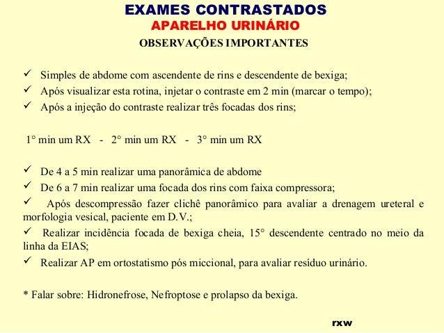 Exame de rim