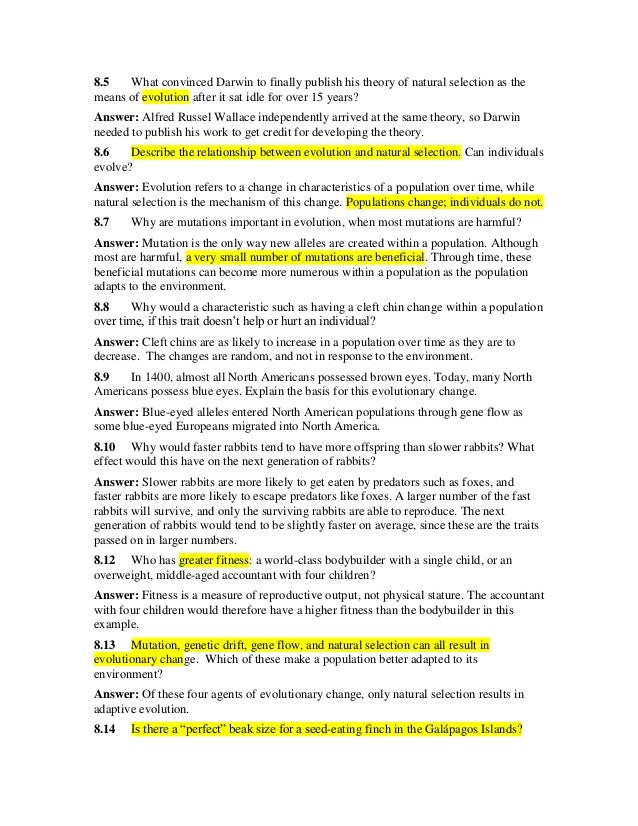an examination of the concept of the peace studies theory The concept of security: an examination of various security paradigms mapping the context in the discipline of international relations,  first international meeting of directors of peace research and training institutions, unesco, paris, 2001, p 41.
