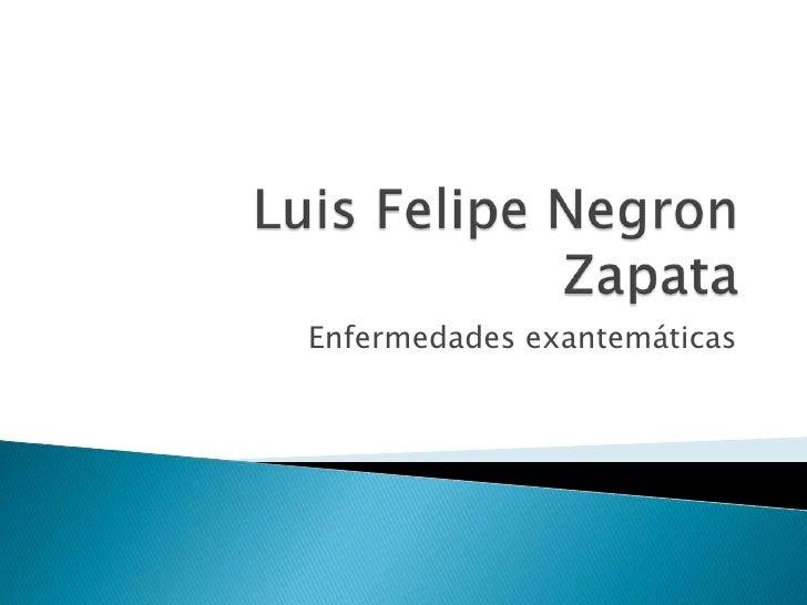 Luis Felipe Negron Zapata<br />Enfermedades exantemáticas<br />