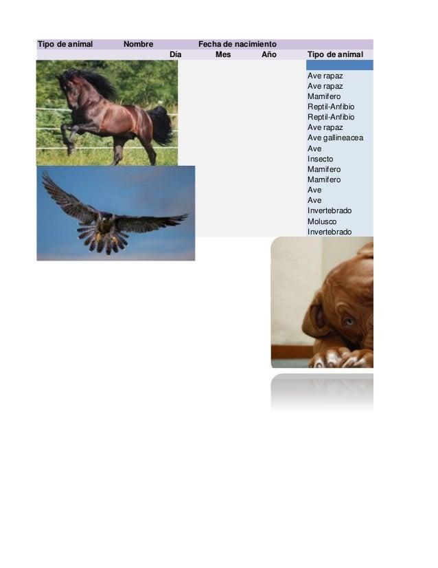 Tipo de animal Nombre Día Mes Año Tipo de animal Ave rapaz Ave rapaz Mamifero Reptil-Anfibio Reptil-Anfibio Ave rapaz Ave ...