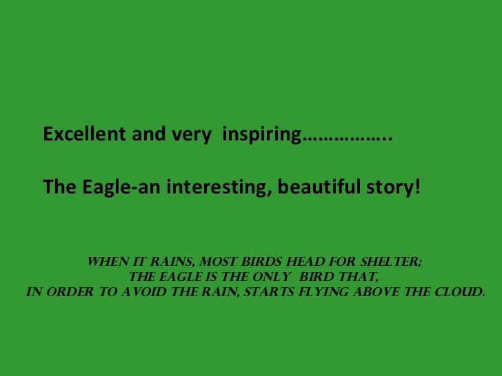 Excellent and very  inspiring……………..   The Eagle-an interesting, beautiful story! When it rains, most birds head for shelt...