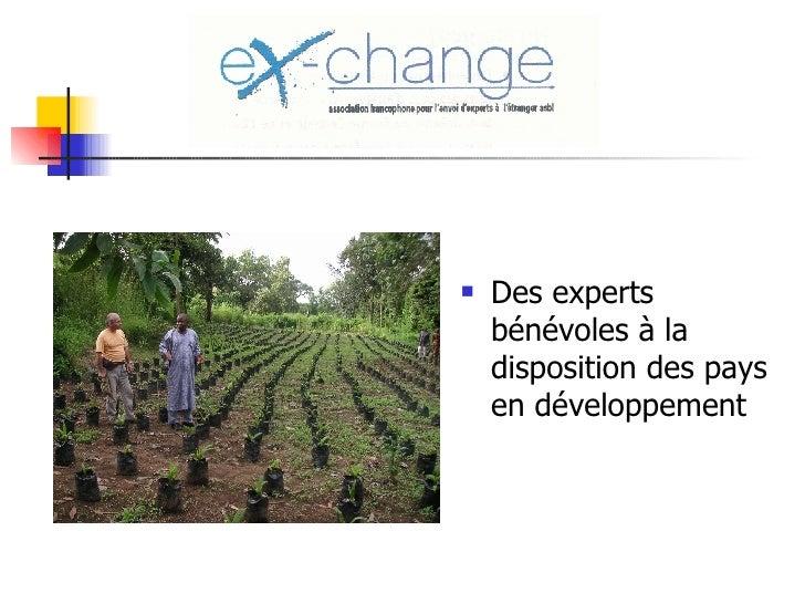 <ul><li>Des experts bénévoles à la disposition des pays en développement </li></ul>