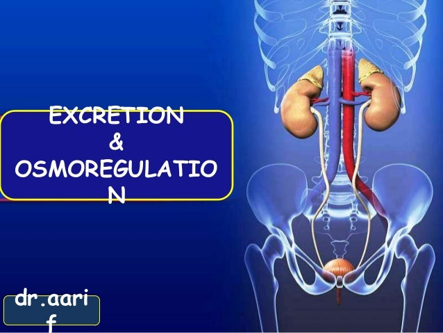EXCRETION      &OSMOREGULATIO      Ndr.aari   f