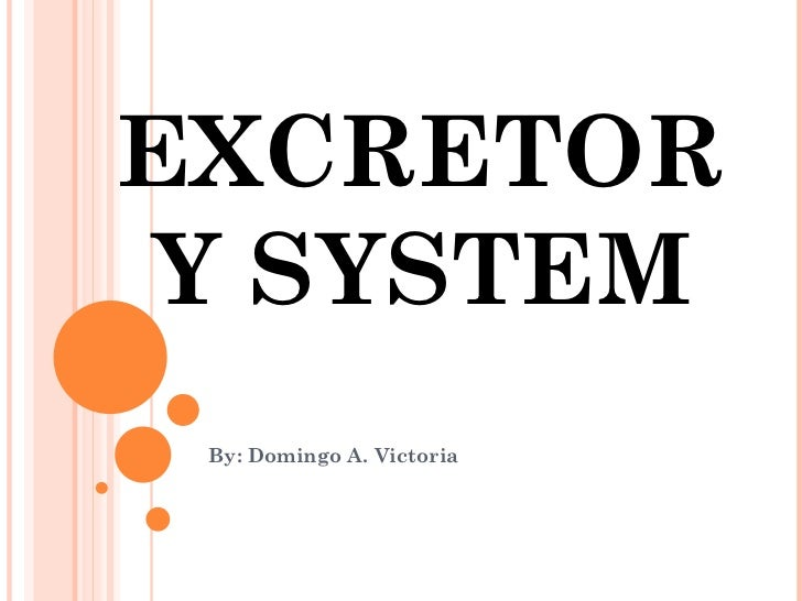 EXCRETORY SYSTEM By: Domingo A. Victoria