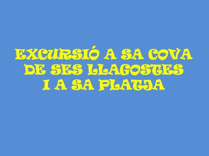 EXCURSIÓ A SA COVA DE SES LLAGOSTES I A SA PLATJA<br />