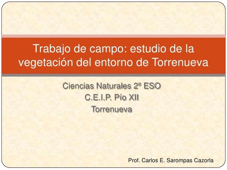 Trabajo de campo: estudio de la vegetación del entorno de Torrenueva         Ciencias Naturales 2º ESO               C.E.I...