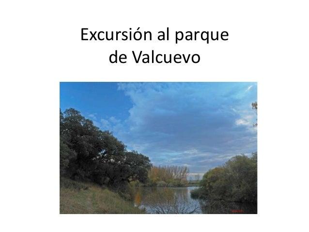 Excursión al parquede Valcuevo