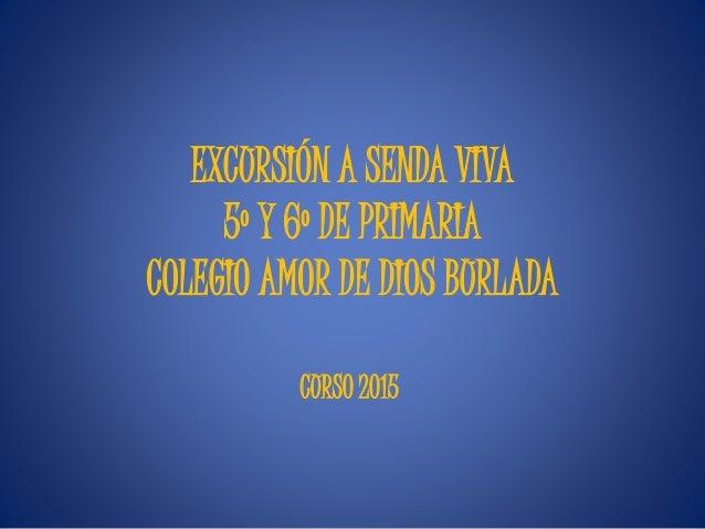 EXCURSIÓN A SENDA VIVA 5º Y 6º DE PRIMARIA COLEGIO AMOR DE DIOS BURLADA CURSO 2015