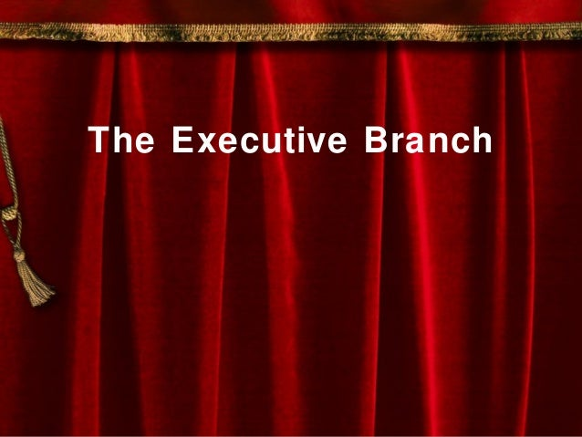 The Executive Branch and the Bureaucracy