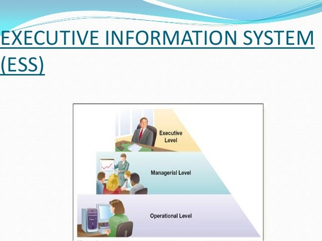EXECUTIVE INFORMATION SYSTEM (ESS)