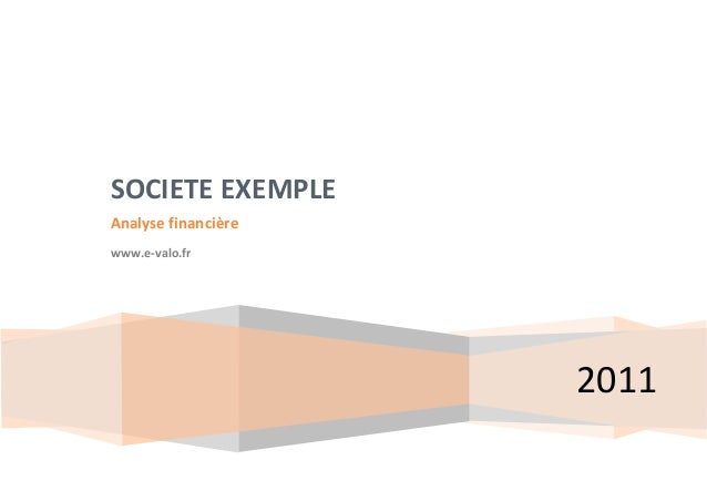 2011 SOCIETE EXEMPLE Analyse financière www.e-valo.fr