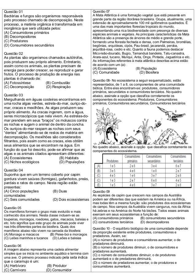 Super ATIVIDADES DIVERSAS CLÁUDIA: Atividades sobre cadeia alimentar SA85