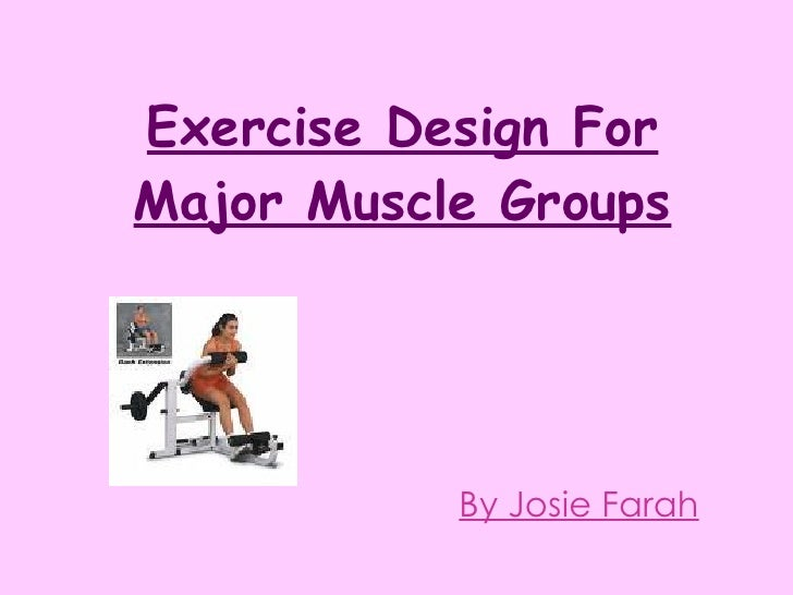 Exercise Design For Major Muscle Groups By Josie Farah
