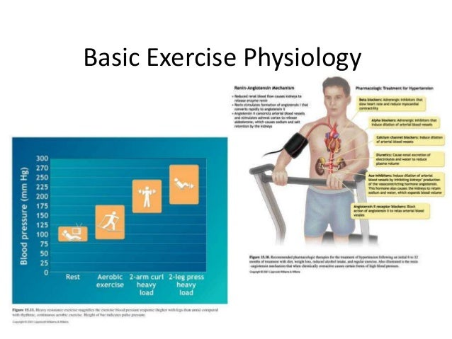 Exercise Physiology what are the basic subjects in college