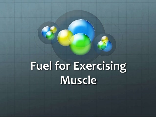 Fuel for Exercising Muscle