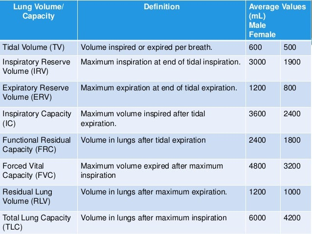 relationship between tidal volume and minute of respiration